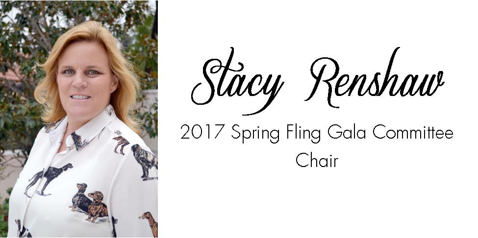 Stacy Renshaw - 2017 Spring Fling Gala Chair